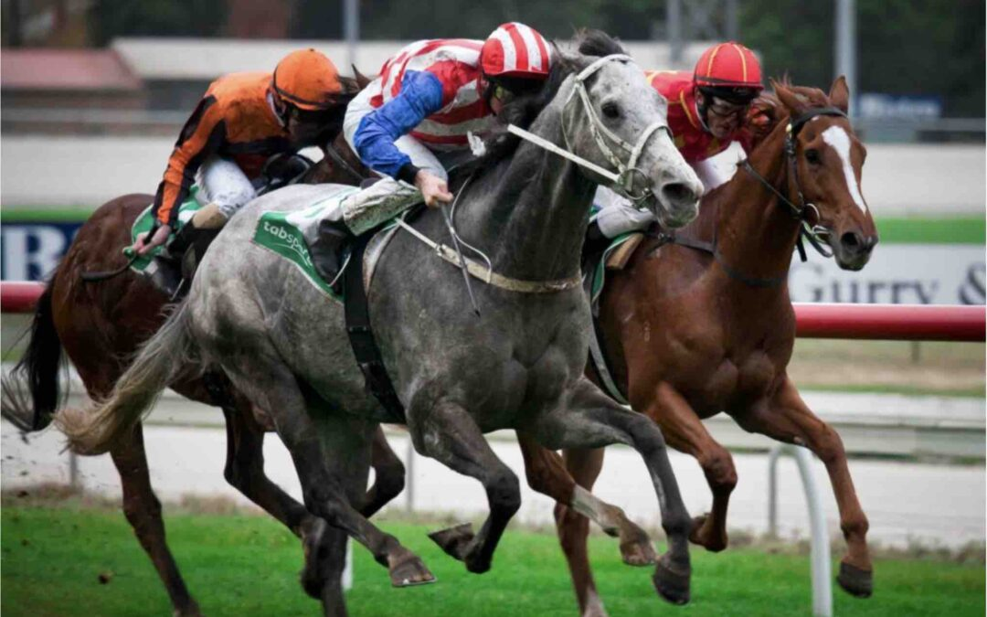 Melbourne Cup Day: Don't Horse Around!